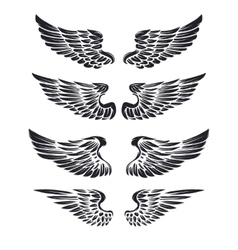 Set of vintage wings isolated on white vector image