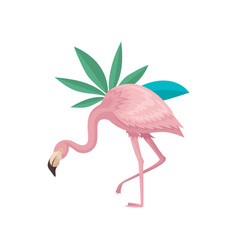beautiful flamingo and leaves of two tropical vector image