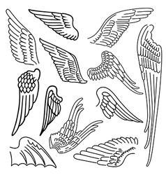 Birds wings set linear silhouette vector image