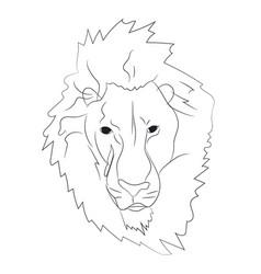 Lion portrait lines vector