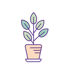 Natural plant with leaves inside flowerpot vector