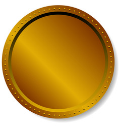 precious metal badge button isolated on white vector image