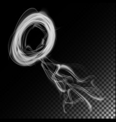 Realistic cigarette smoke waves white and vector