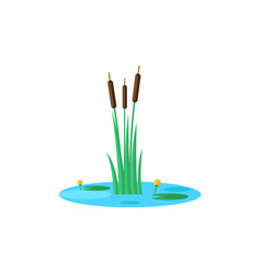 Reed and water lilies on pond mini natural vector