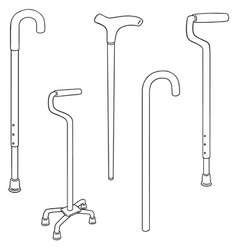 set of walking stick vector image
