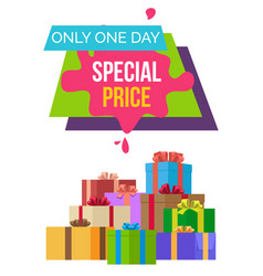 special price only 1 day exclusive product quality vector image