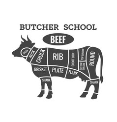 cow butcher diagram vector image