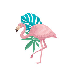 flamingo with palm tree and monstera leaves vector image