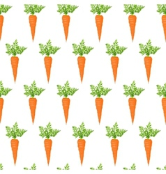 Fresh carrot vector image