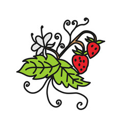 strawberry fruit design template vector image