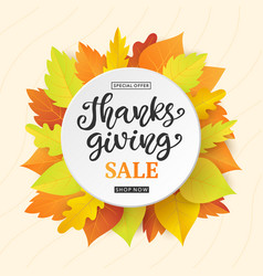 Thanksgiving day sale banner template vector