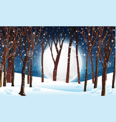 Winter forest at night scene vector