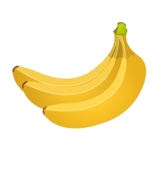 Banana batch isolated on white background vector image