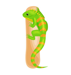 animals alphabet for kids fish letter i cartoon vector image vector image