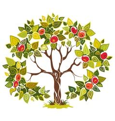 fruitful apple tree vector image