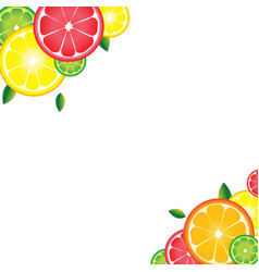 background of citrus fruits for bar cocktails vector image