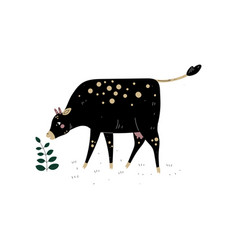 black cow grazing on meadow dairy cattle animal vector image