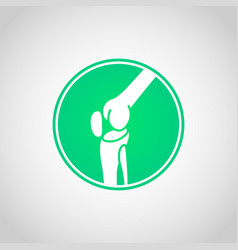 Bone and joint health icon vector