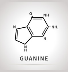 Chemical structure guanine one four vector