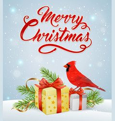 Christmas background with red cardinal bird vector