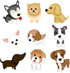 Dog breeds vector
