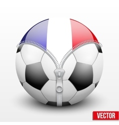 France symbol inside football ball vector