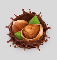 hazelnut and chocolate splash realistic 3d icon vector image