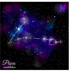 pisces constellation with triangular background vector image