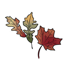 Autumn fallen colorful leaves vector