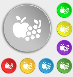 Fruits web icons sign Symbol on eight flat buttons vector image