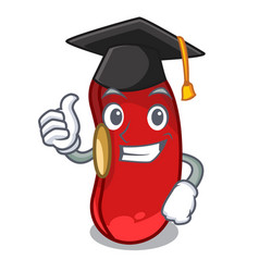 graduation red bean in the cartoon bowl vector image