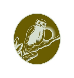 owl perched on a tree branch vector image