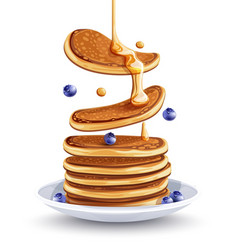Pancakes with blueberries vector