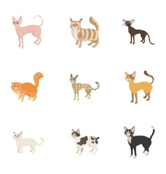 Cats icons set cartoon style vector image vector image