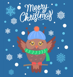 merry christmas owl with scarf vector image