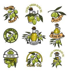 set of olive oil emblems olive branch vector image