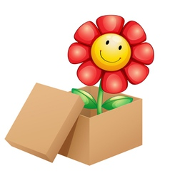 A flower inside the box vector image