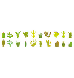 Cactus set collection exotic plants vector