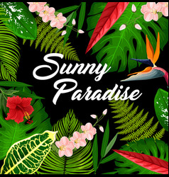 tropical paradise plant leaves and flowers poster vector image