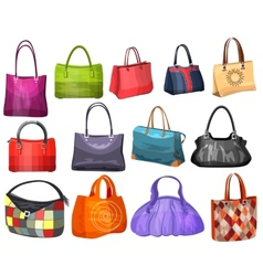 Womens fashion collection of bags vector image