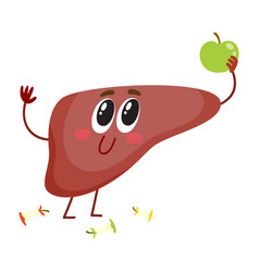 cute and funny smiling human liver character vector image vector image