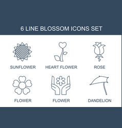 blossom icons vector image