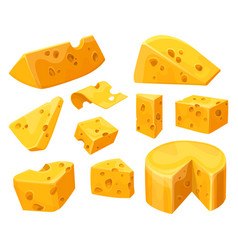 cheese heads and slices or lumps with holes vector image