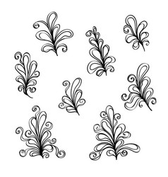 set abstract flower ornaments vector image