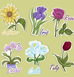 Set of color labels with flowers Hand drawing vector image