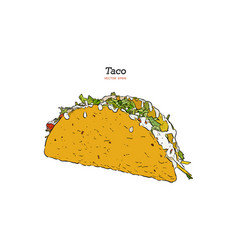Taco mexican traditional food hand drawn vector