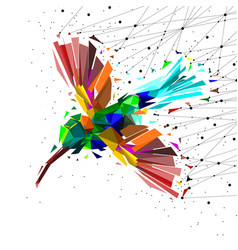 abstract of low poly hummingbird with point vector image