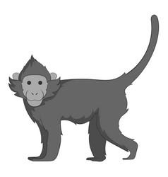 capuchin icon monochrome vector image