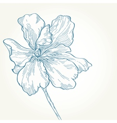Drawing a blue flower on a white background vector