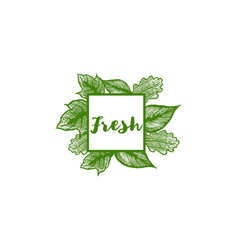 fresh label leaf ornament logo vector image